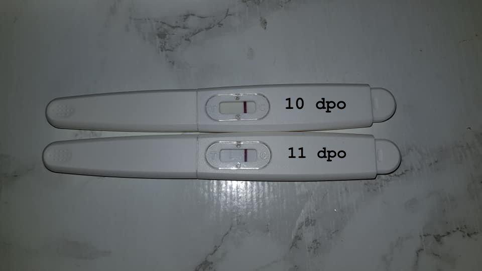 ta graviditetstest på kvelden