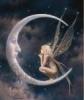 Månefeen ♥